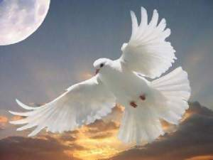 the holy spirit4
